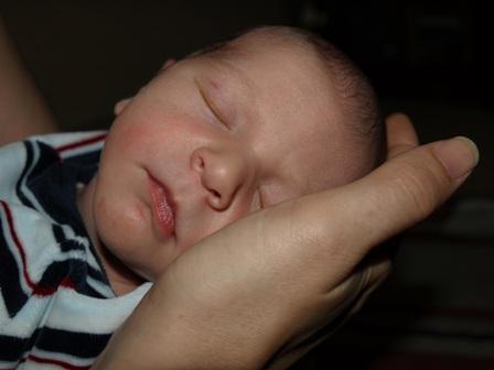 Grupo de lactancia y crianza